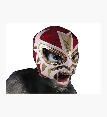Lucha Monkey Photographic Print