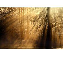 20.1.2013: Frozen Stream I Photographic Print