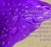 Rejoice in the Lord. . . by aprilann