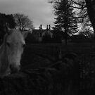 The White Horse! by KurtBarlow