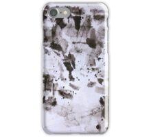 Canyon Flight 2 - Canyon de Chelly iPhone Case/Skin