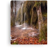 Plitvice waterfalls Canvas Print