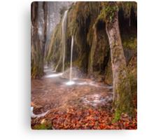 Plitvice waterfalls Canvas Print
