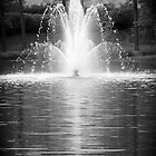 Fountain of Youth by tflow13