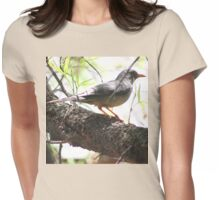 Karoo Thrush (Geelbeklyster) Womens Fitted T-Shirt
