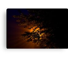 Rush Road Street Lamp Canvas Print