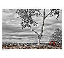 Hilltop Farm Photographic Print
