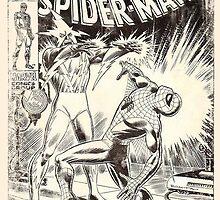 Weathered Spider-Man by Frazer Varney