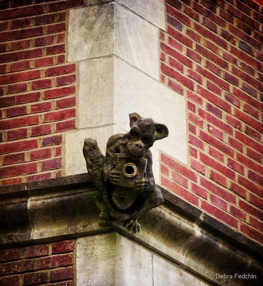 Just a little Monkey with a Camera by Debra Fedchin