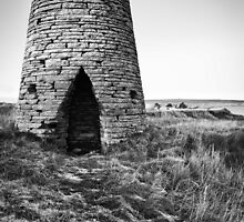 Ruin at Castletown by Chris Cardwell