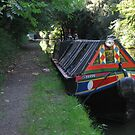Narrowboat moored on the Grand Union Canal by elsiebarge