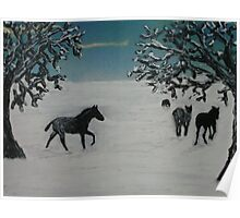 Horses in winter Poster