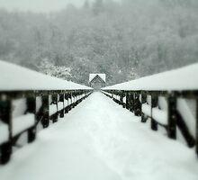 Winter by Aleš Sotelšek