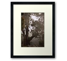 Big Old Tree on the Mountain Side by Lorraine McCarthy Framed Print