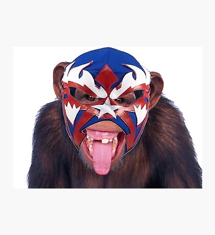 lucha monkey 2 Photographic Print