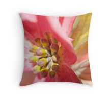 Macro Pink Dogwood Blossom Throw Pillow