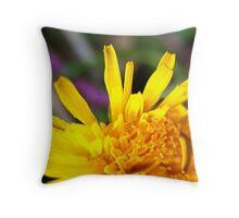 Macro Dandelion Bloom Throw Pillow