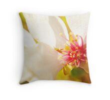 Macro Kwansan Cherry Blossom Throw Pillow