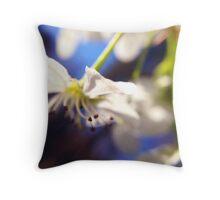 Bradford Pear Bloom 2 Throw Pillow