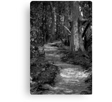 Black and White Road Less Traveled Canvas Print
