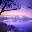 Sunday Morning at Okanagan Lake by Tara  Turner