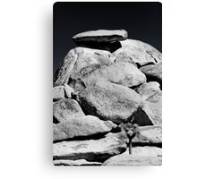 Cap Rock 2 Canvas Print