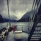 Who'll stop the rain by andreisky