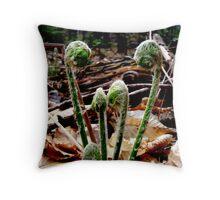 First Fiddleheads, Maine Throw Pillow