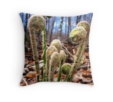 Fiddleheads: the meeting of heads Throw Pillow