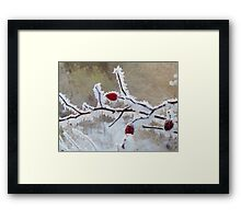 Frost Berry Red Framed Print