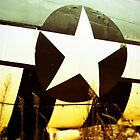 P-47 Star & Stripes by atomkinder