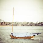 Small Sailboat by Elizabeth Thomas