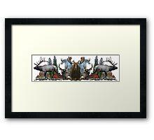 North American Wildlife  Framed Print
