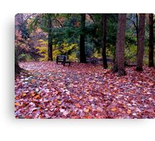 Remembering the fall Canvas Print