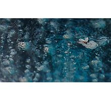 Froze solid Photographic Print