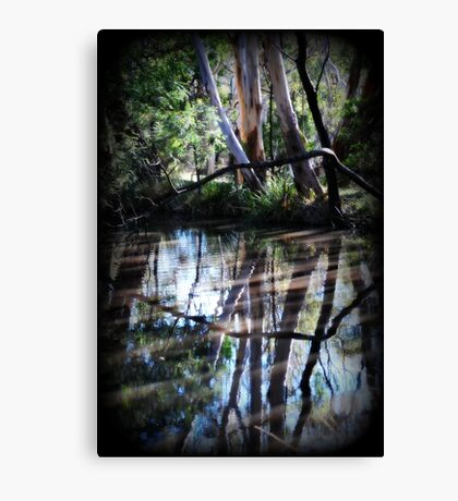 Rivers of Life by Lorraine McCarthy Canvas Print