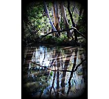 Rivers of Life by Lorraine McCarthy Photographic Print