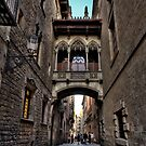 Enchanted Streets of Barcelona by Yelena Rozov