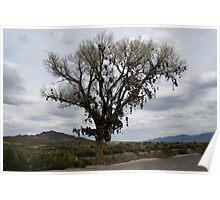 The Shoe Tree,outside Fallon Nevada,USA Poster