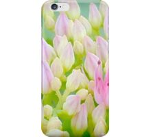 Green And Pink Summer Impression iPhone Case/Skin