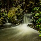 Ohau Point Stream by srhayward