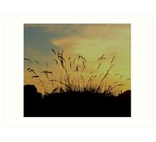 An Evening Sky With Grasses Art Print