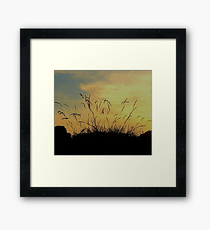 An Evening Sky With Grasses Framed Print
