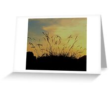 An Evening Sky With Grasses Greeting Card