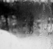 Dreary Day by Kareena  Kapitzke
