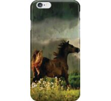 Wild Horse Challenges Wild Storm Phone Case iPhone Case/Skin