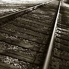 Railroad Tracks by Henrik Lehnerer