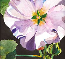 Hollyhock by Sally Griffin