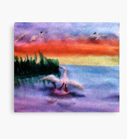 Coming in for a landing, watercolor Canvas Print