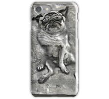 Pug in Carbonite iPhone Case/Skin